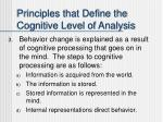 principles that define the cognitive level of analysis2