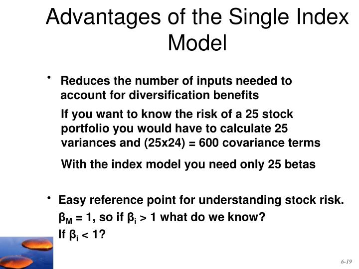 Advantages of the Single Index Model