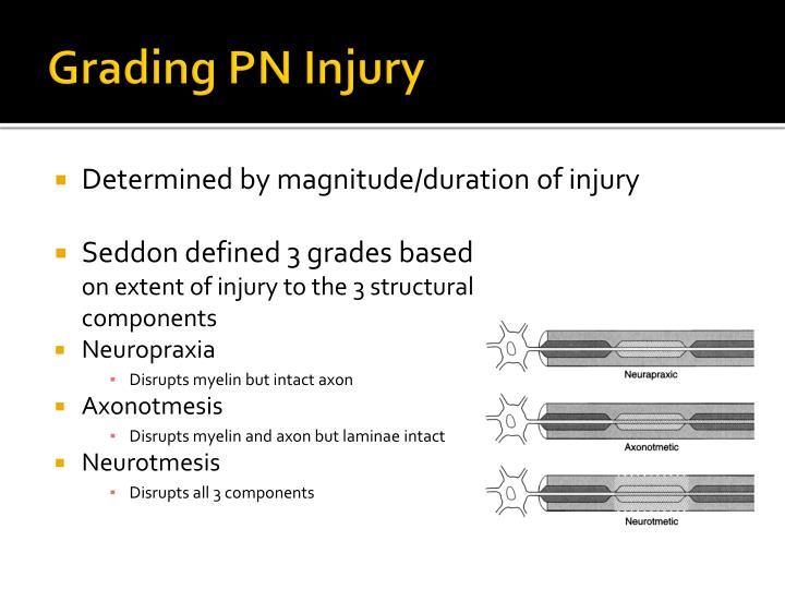 Grading PN Injury