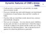 dynamic features of cnb s stress tests