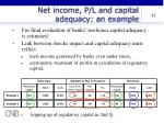 net income p l and capital adequacy an example