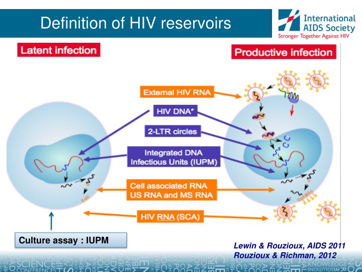 Definition of hiv reservoirs
