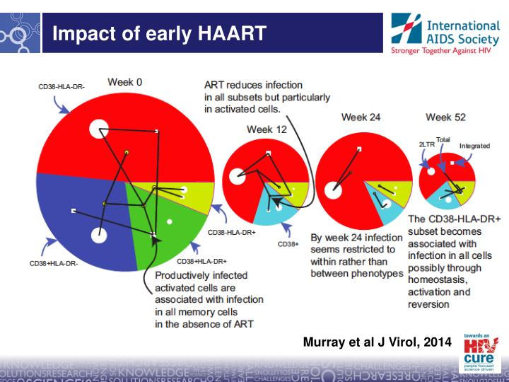 Impact of early HAART