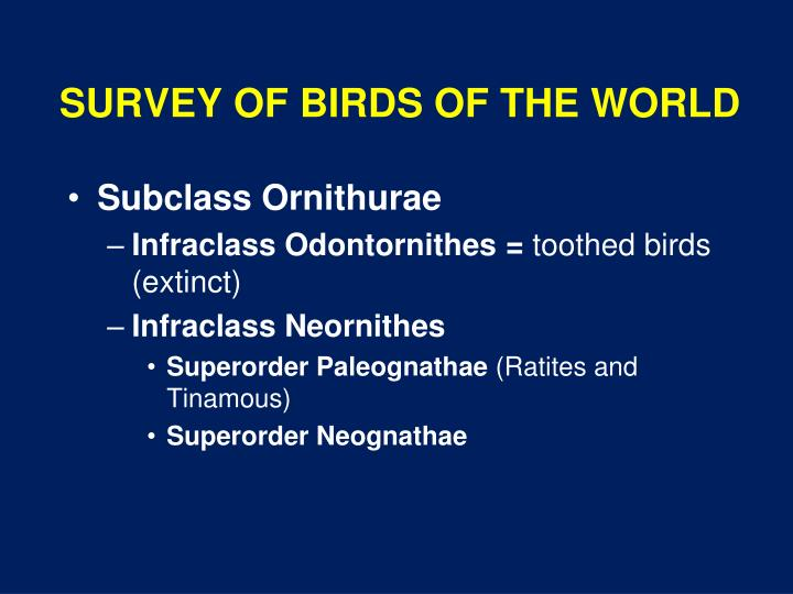 Survey of birds of the world