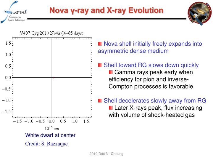 Nova γ-ray and X-ray Evolution