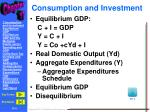 consumption and investment1