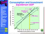 consumption and investment4