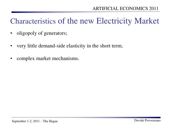 Characteristics of the new electricity market