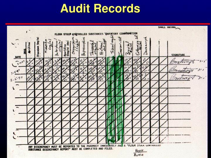 Audit Records
