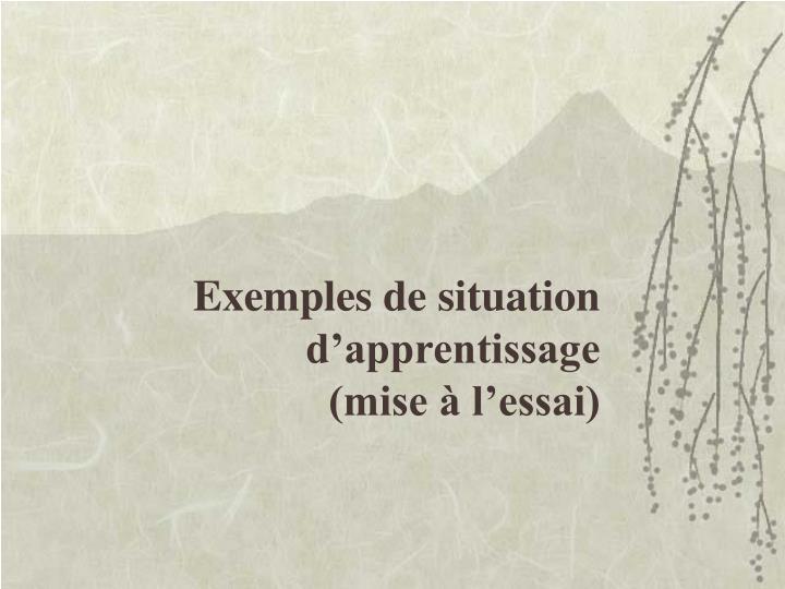 Exemples de situation d'apprentissage