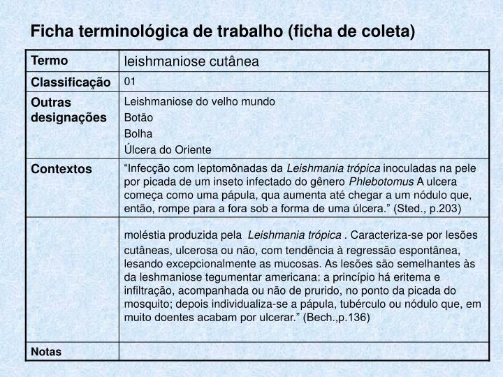 Ficha terminológica de trabalho (ficha de coleta)