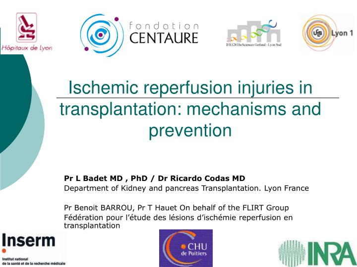 ischemic reperfusion injuries in transplantation mechanisms and prevention n.