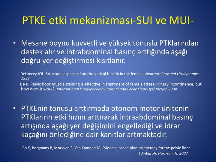 PTKE etki mekanizması-SUI ve MUI-