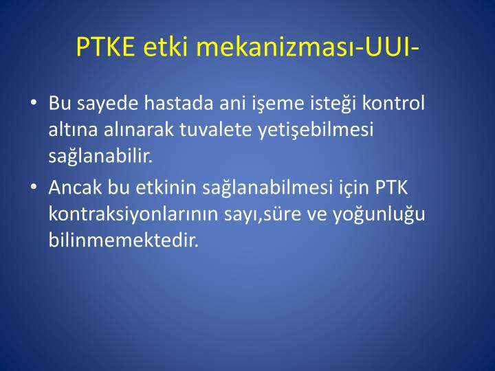 PTKE etki mekanizması-UUI-