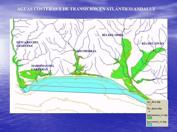 AGUAS COSTERAS Y DE TRANSICIÓN EN ATLÁNTICO ANDALUZ