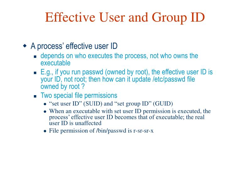 Effective User and Group ID