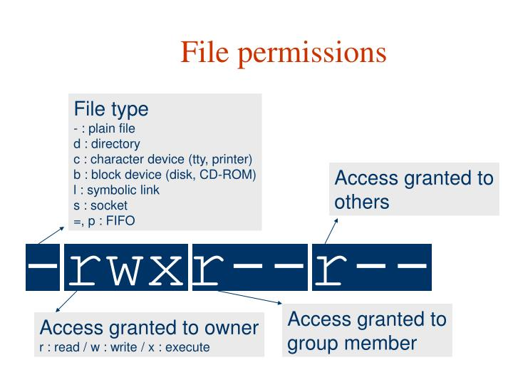 File permission