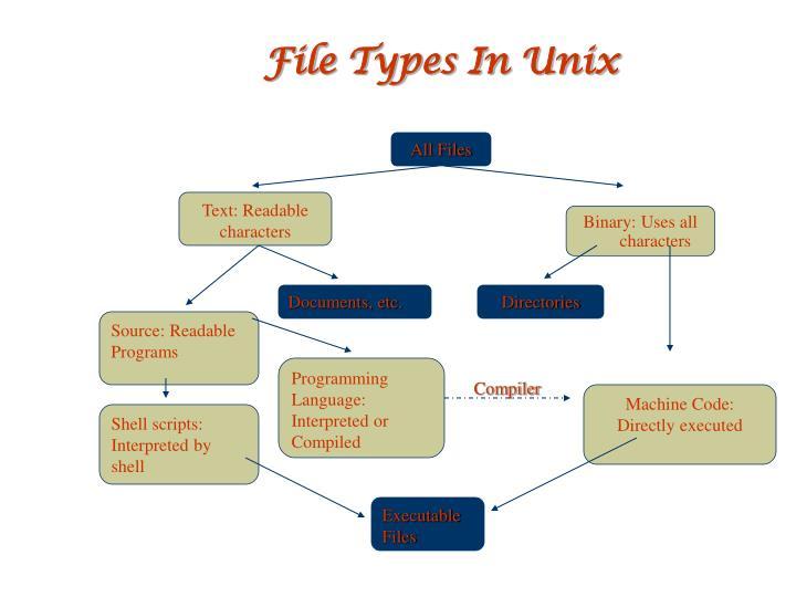 File Types In Unix