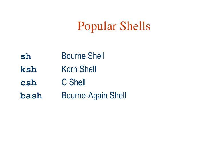 Popular Shells