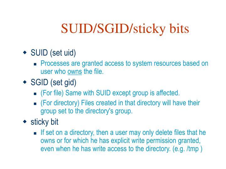SUID/SGID/sticky bits