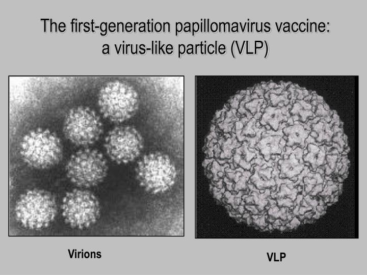 The first-generation papillomavirus vaccine: