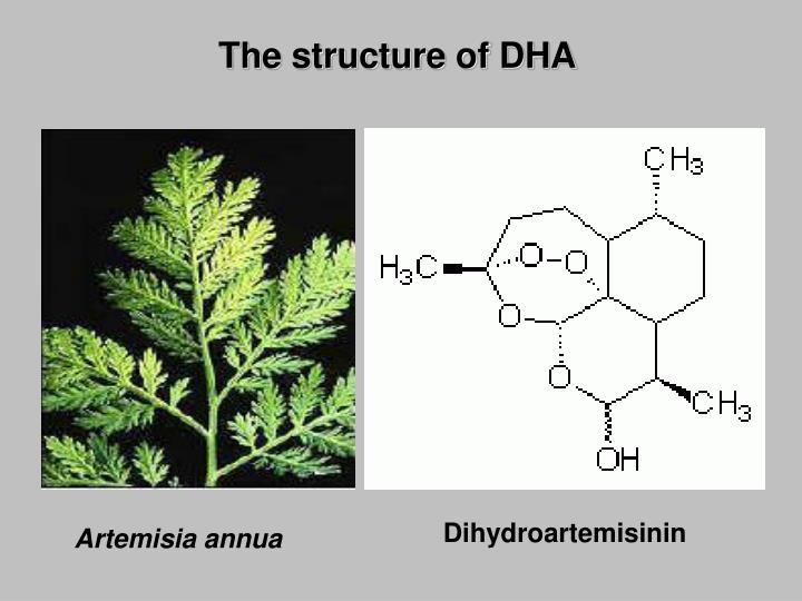Dihydroartemisinin