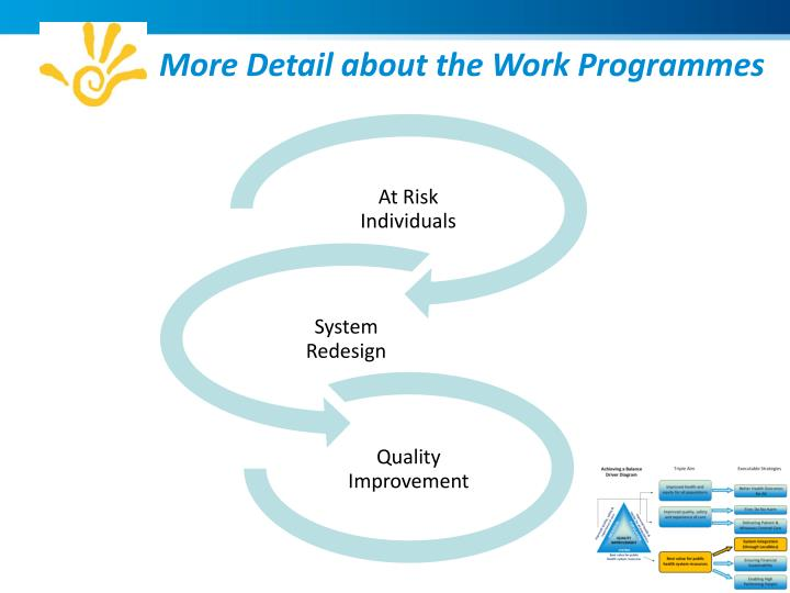 More Detail about the Work Programmes