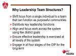 why leadership team structures