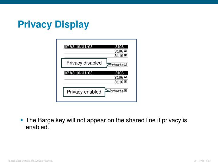 Privacy Display