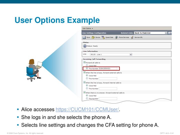 User Options Example