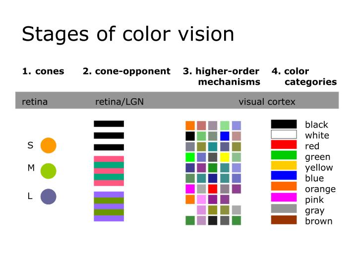 ppt color appearance of natural objects powerpoint presentation