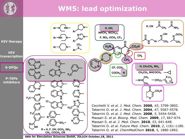WM5: lead optimization