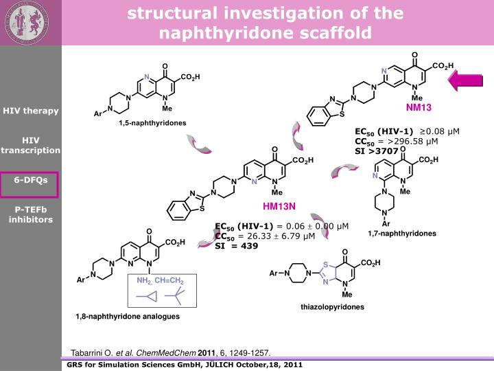 structural investigation of the naphthyridone scaffold