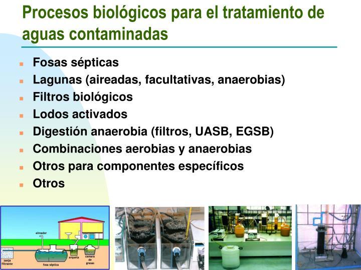 Procesos biológicos para el tratamiento de aguas contaminadas