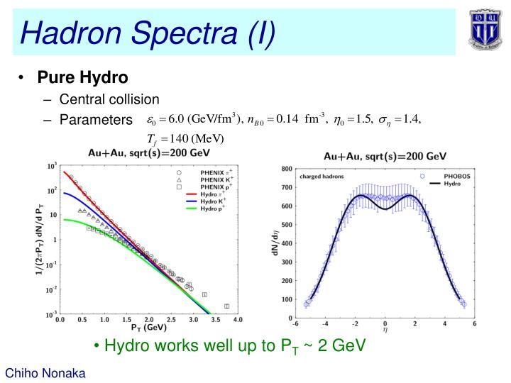 Hadron Spectra (I)
