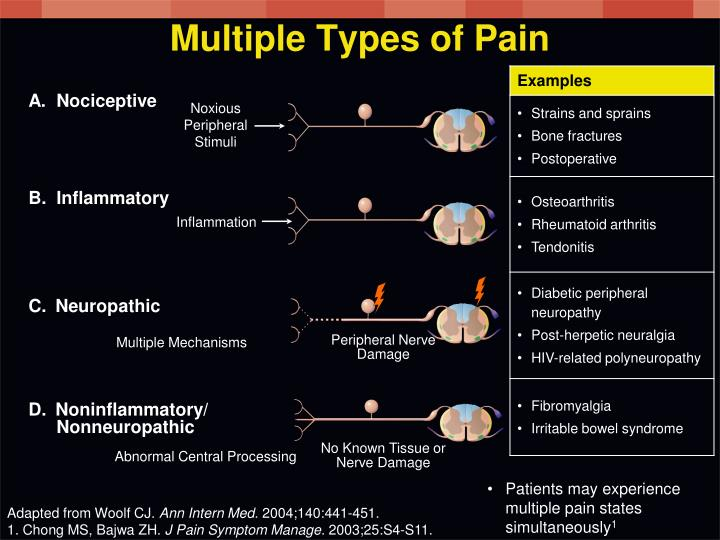 Multiple Types of Pain