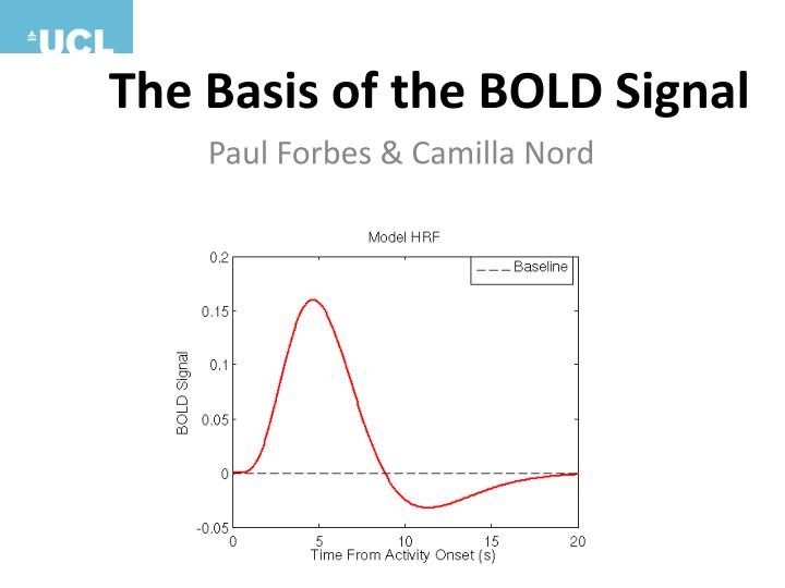 the basis of the bold signal n.