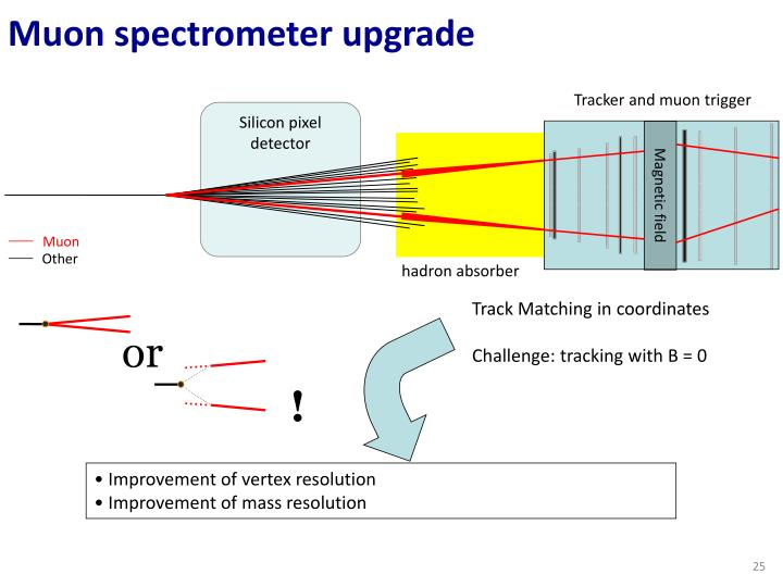 Muon spectrometer upgrade