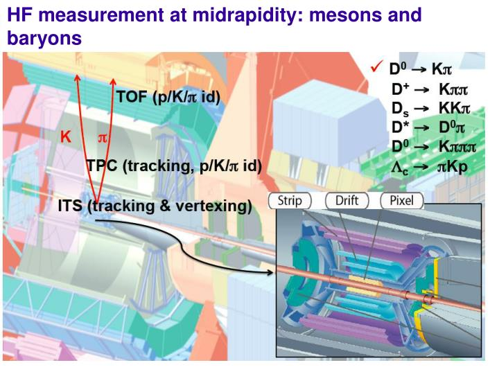 HF measurement at midrapidity: mesons and baryons