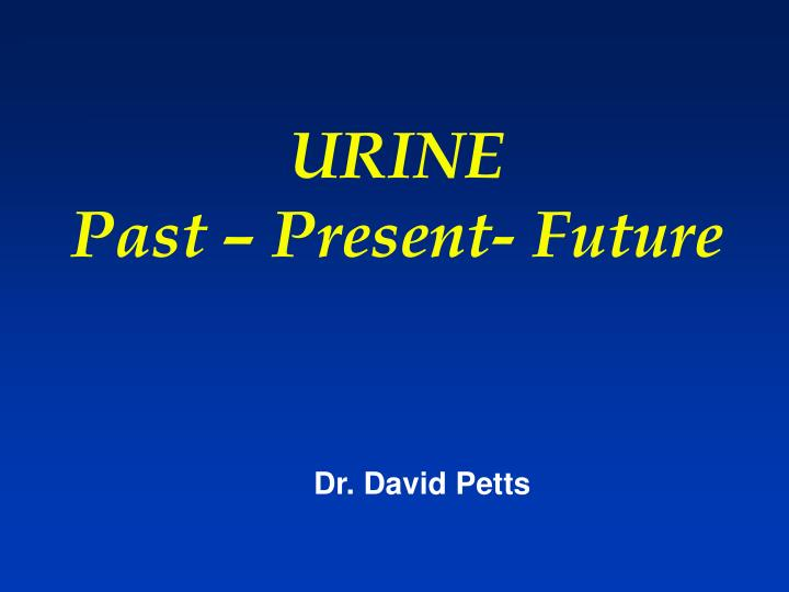 urine past present future n.