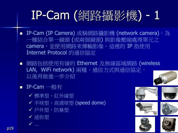 IP-Cam (