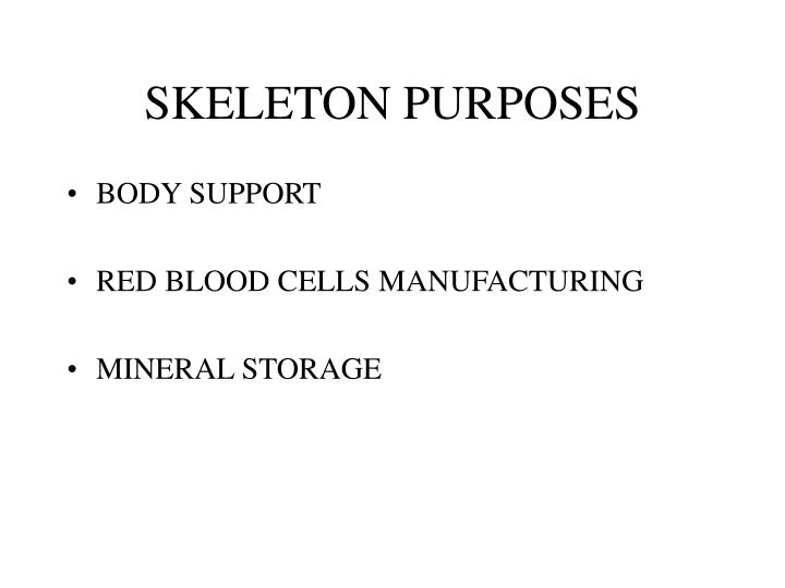 SKELETON PURPOSES