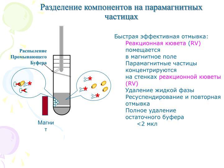 Разделение компонентов на парамагнитных частицах
