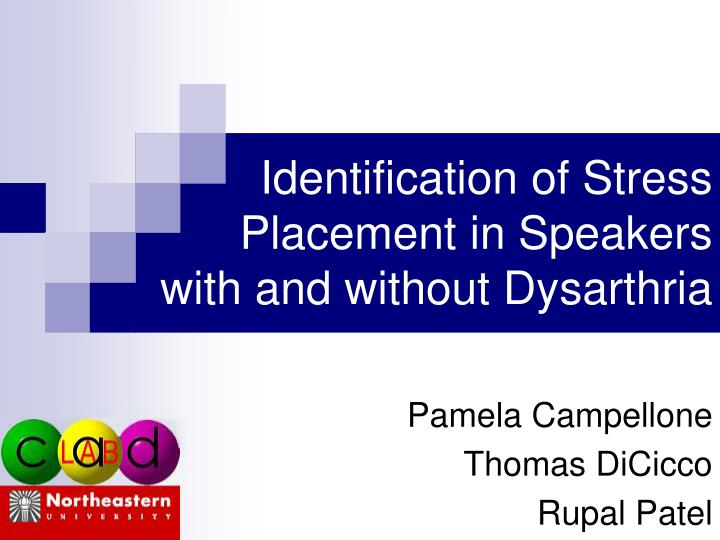 Identification of stress placement in speakers with and without dysarthria