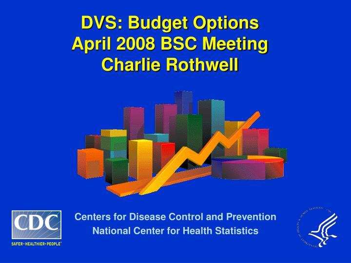 dvs budget options april 2008 bsc meeting charlie rothwell n.