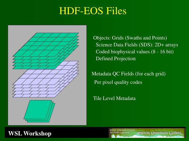 HDF-EOS Files