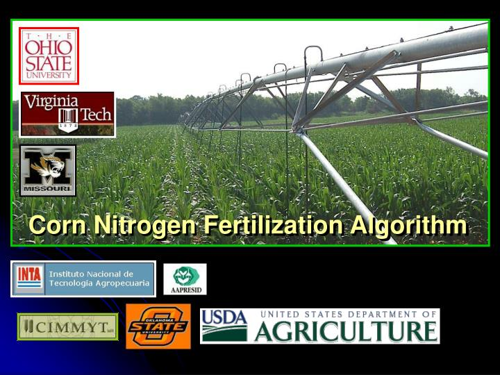 Corn nitrogen fertilization algorithm