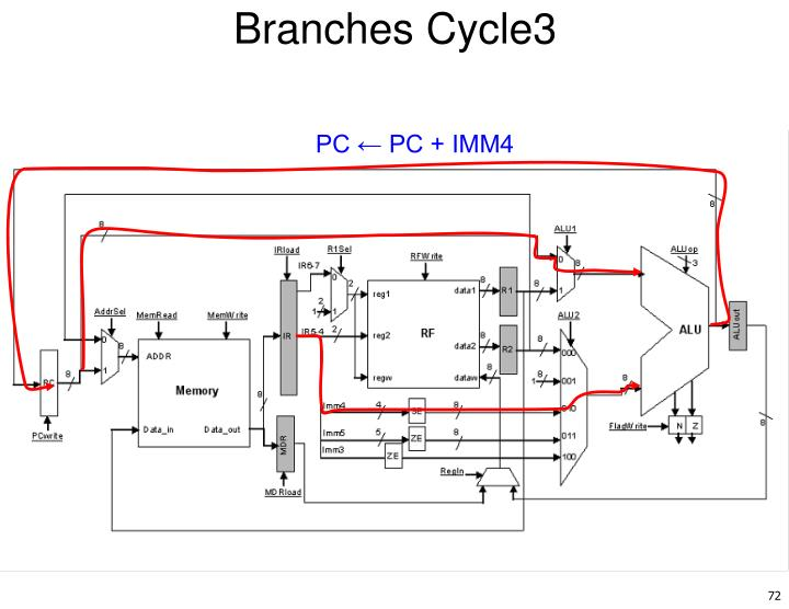 Branches Cycle3