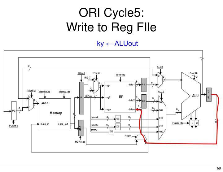 ORI Cycle5: