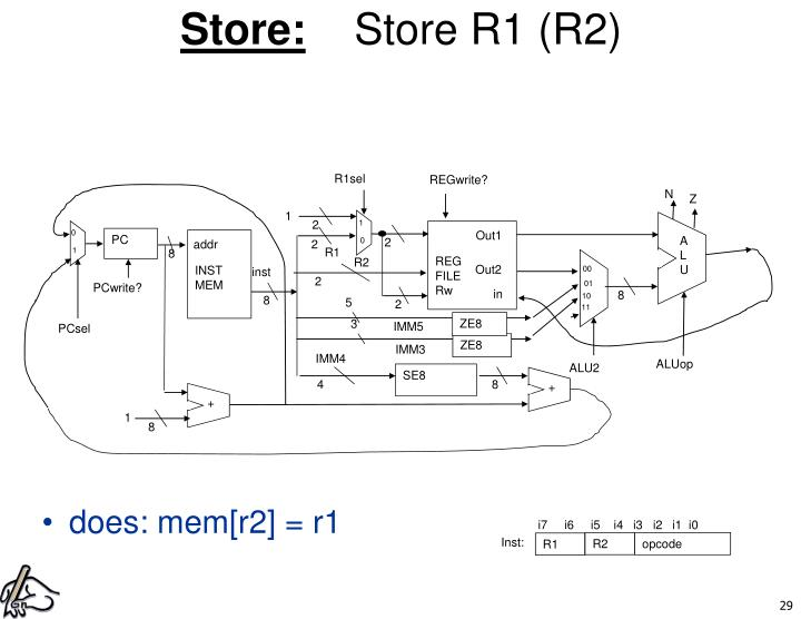 Store: